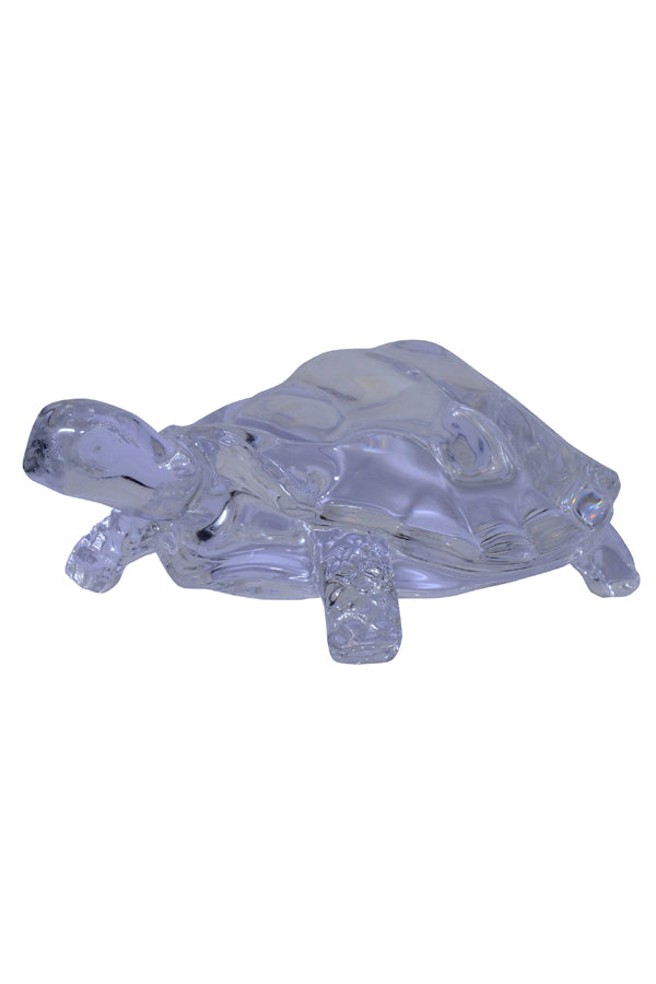 glass-turtle-showpiece-the-199-store-rs-199