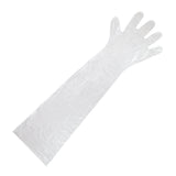 "35"" Shoulder Length Poly Glove"
