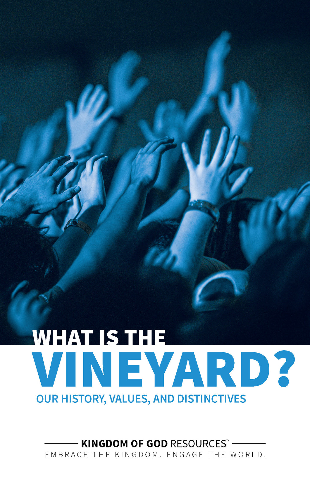 What Is The Vineyard?