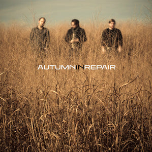 Autumn In Repair [MP3]