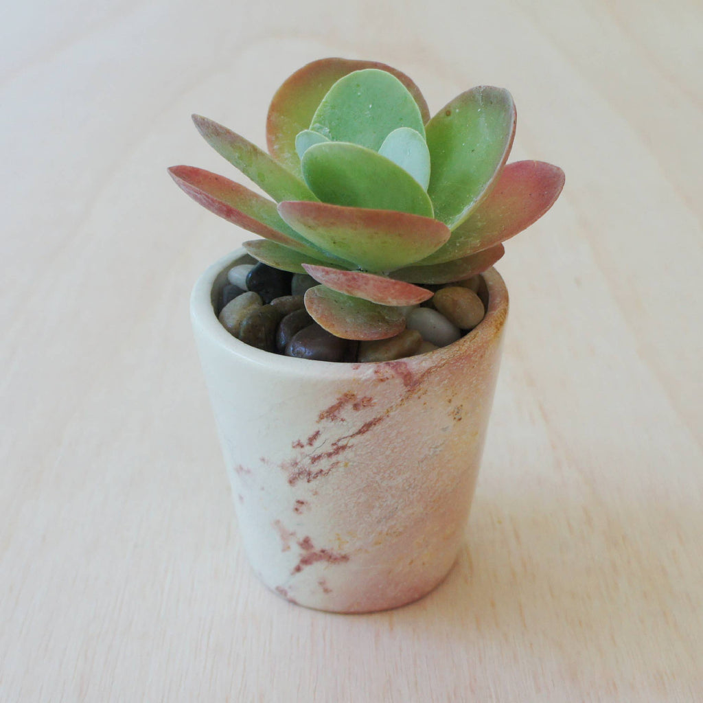 Natural Soapstone Round Planter