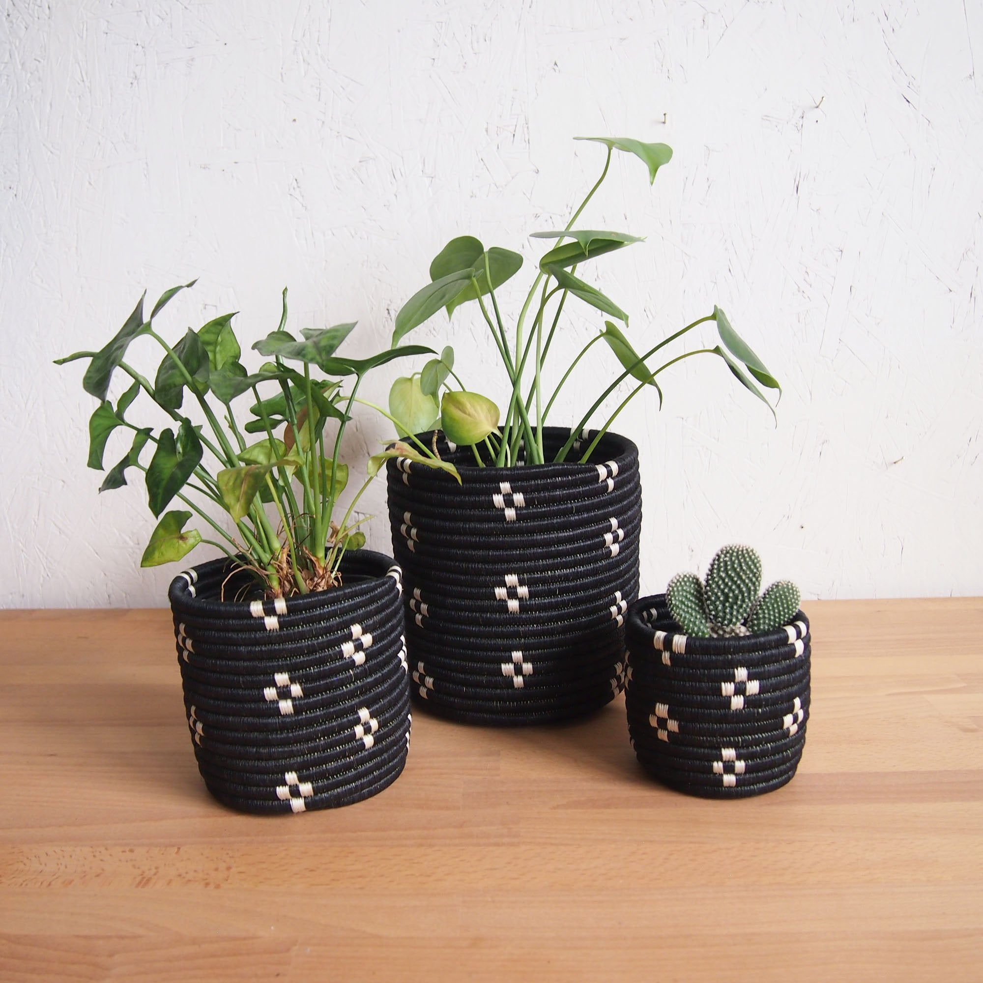 Munazi Planter Baskets