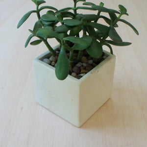 Natural Soapstone Square Planter