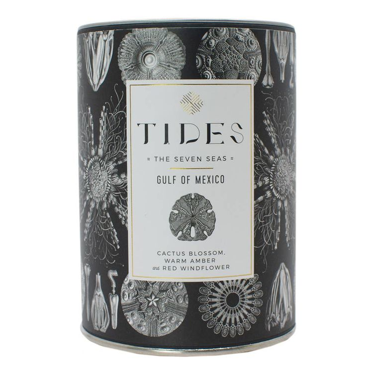 TIDES Seven Seas Gulf of Mexico Candle | 11 oz