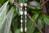 925 Silver Grey Moonstone and Zirconia Dangling Earrings