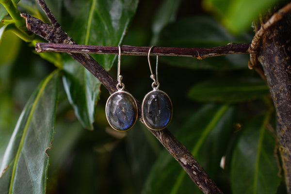 925 Silver Simple Labradorite Earrings