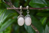 925 Silver Large Oval Rose Quartz Decorated Earrings