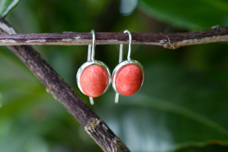 925 Silver Reconstituted Coral Oval Stud Earrings