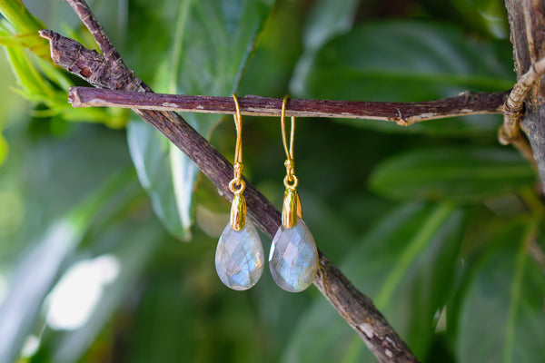 925 Silver Gold-Plated Labradorite Drop Earrings