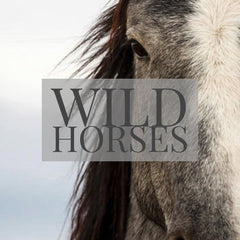 Wild Horses Fine Art Printed Throw Pillows by Jani Bryson Storyteller
