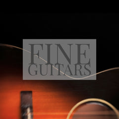 Fine Guitars Fine Art Printed Throw Pillows by Jani Bryson Storyteller
