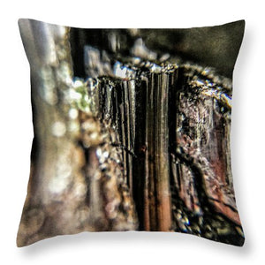 Crystals And Stones Black Tourmaline 1540 - Throw Pillow - Jani Bryson Intuitive Photographer