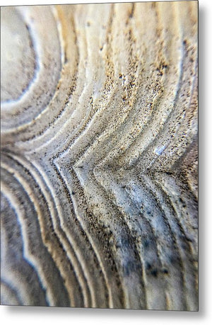 Crystals And Stones Crazy Lace Agate 1001 - Metal Print - Jani Bryson Intuitive Photographer