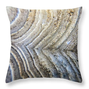 Crystals And Stones Crazy Lace Agate 1001 - Throw Pillow - Jani Bryson Intuitive Photographer