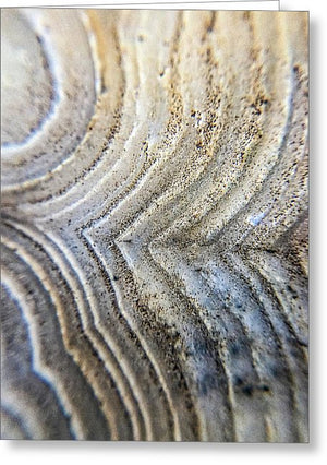 Crystals And Stones Crazy Lace Agate 1001 - Greeting Card - Jani Bryson Intuitive Photographer