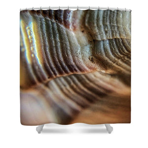 Crystals And Stones Shell 4721 - Shower Curtain