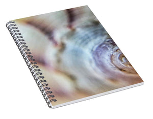 Crystals And Stones Shell 4972 - Spiral Notebook - Jani Bryson Intuitive Photographer