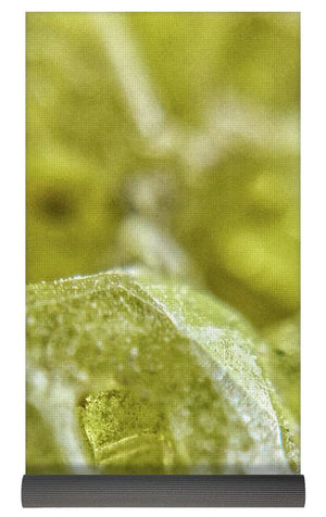 Crystals And Stones Sulphur 1617  - Yoga Mat - Jani Bryson Intuitive Photographer