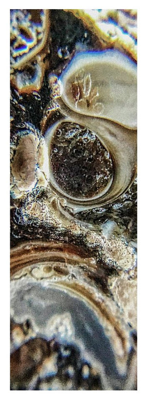 Crystals And Stones Turritella Agate 2456 - Yoga Mat - Jani Bryson Intuitive Photographer