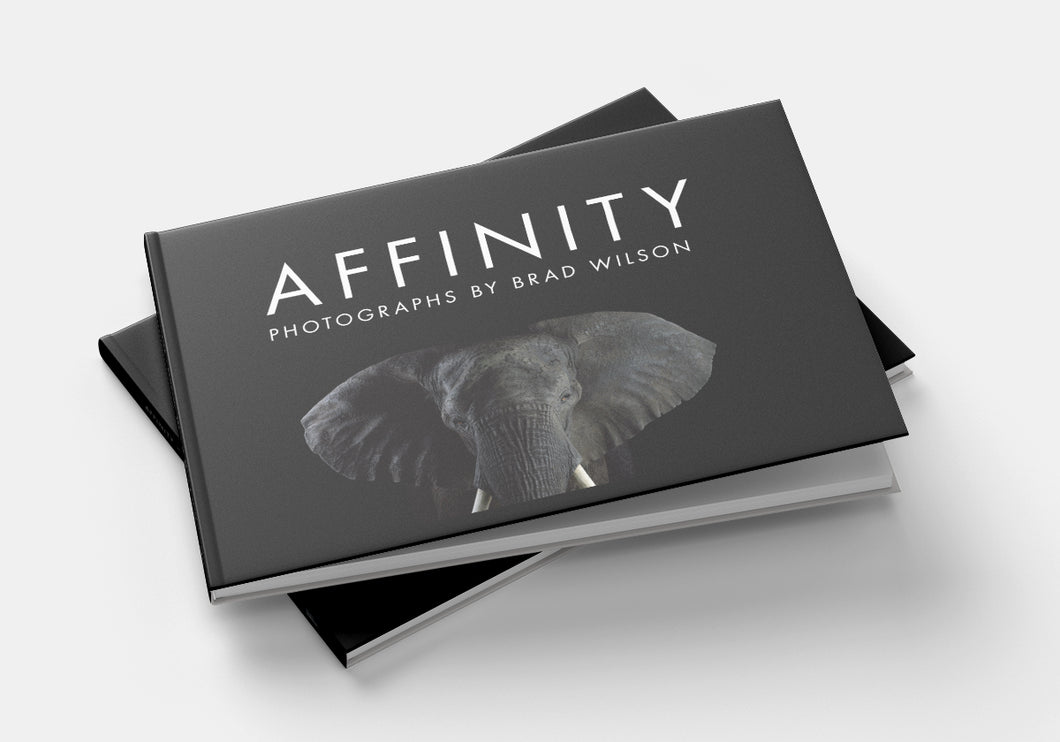 AFFINITY Book by Brad Wilson