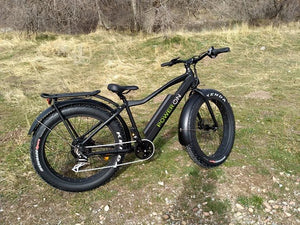 Fat Tire eBike