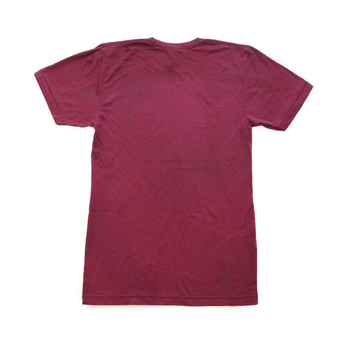 Unisex Winter in Michigan Tri-Blend Tee - Tri-Cranberry