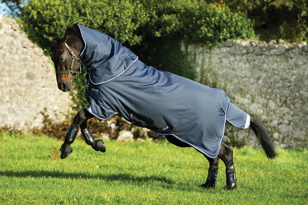 Amigo Bravo 12 Plus Medium 250g by Horseware Ireland