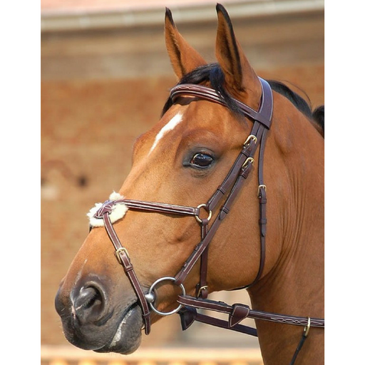 Dyon Figure 8 Bridle Dyon Collection
