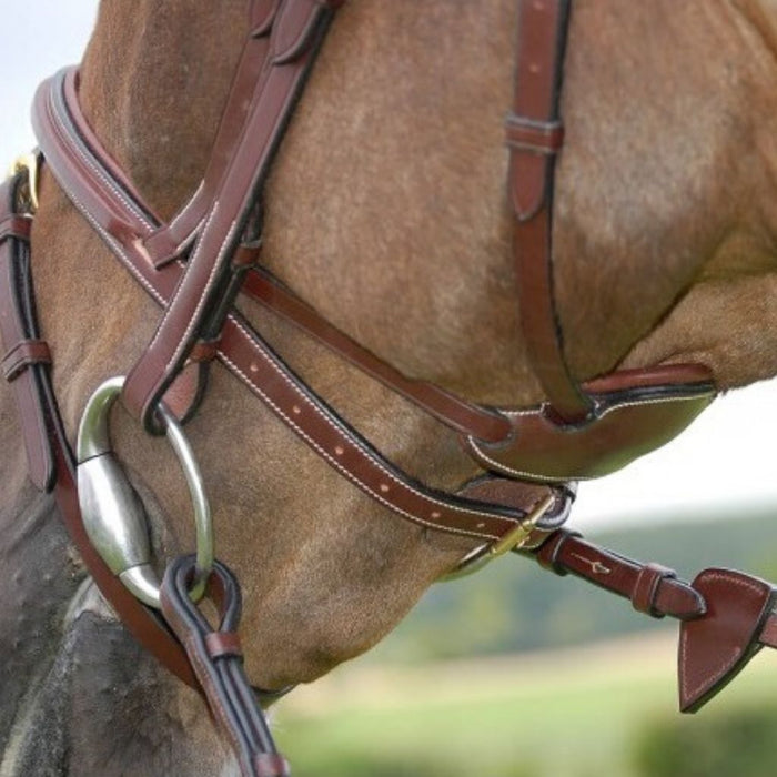 Dyon Difference Bridle with Flash Difference Collection