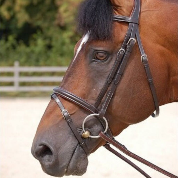 Dyon Classic Bridle with Flash Working Collection