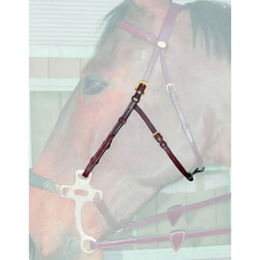 Dyon Hackamore Cheek Pieces English Collection