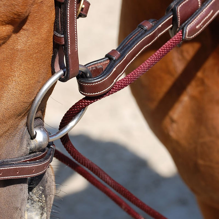 "D'yon 5/8"" Leather and Nylon Rope draw reins"