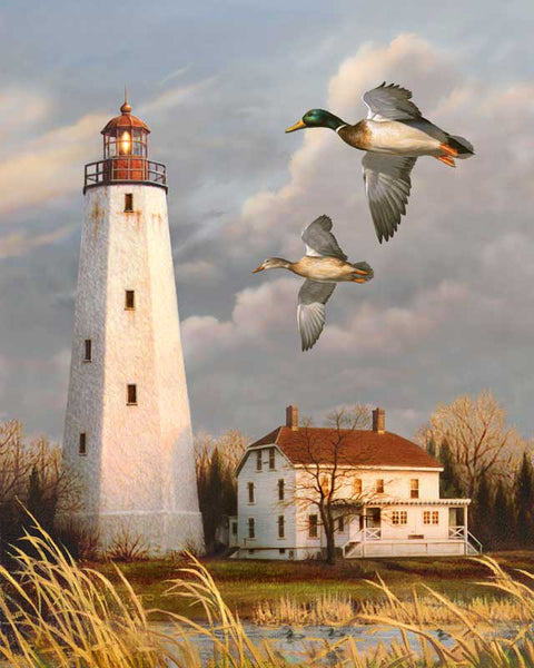 Lighthouse And Mallards