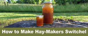 How to Make Hay-Makers Switchel