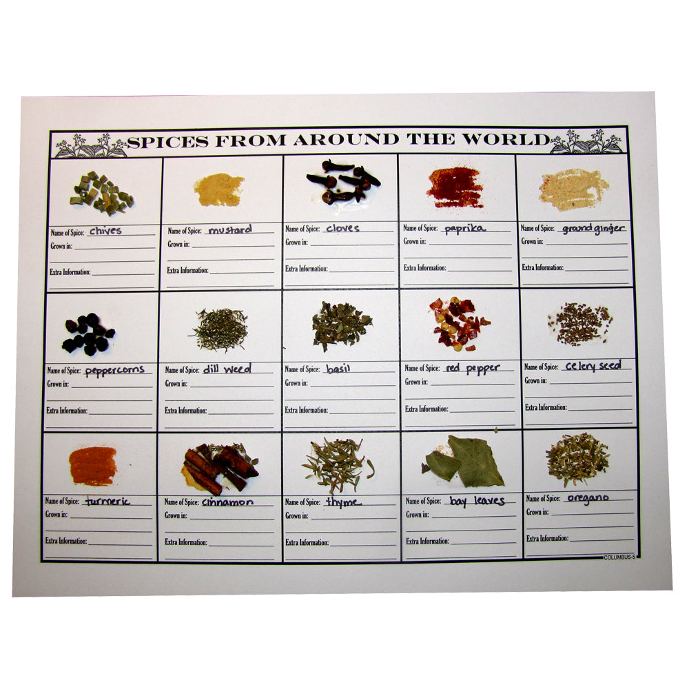 Spices from Around the World Notebooking Page
