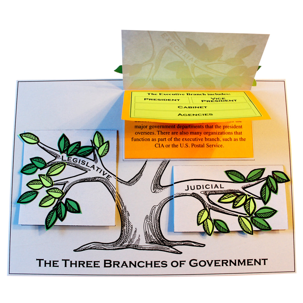 The Three Branches of Government Lap Book Project