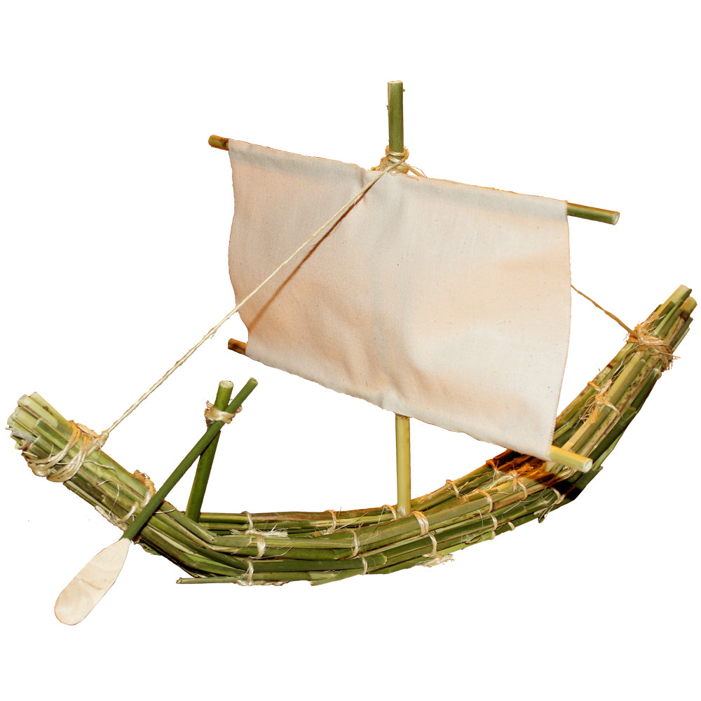 Reed Boat Project