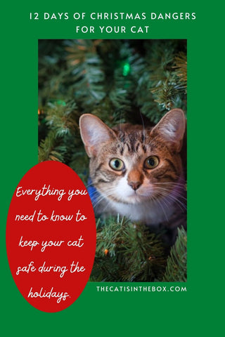 12 Days of Christmas Dangers for your Cat - Pinterest Friendly Pin