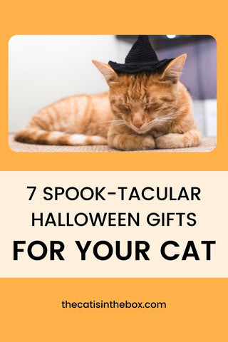 7 Spook-tacular Halloween Gifts for your Cat - Pinterest friendly pin