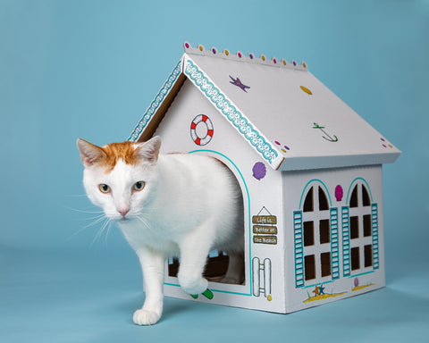 Breezy Beach Cottage by Cat in the Box