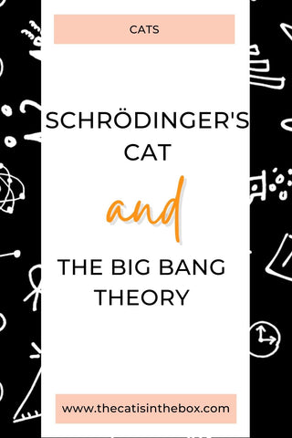 On boxes, Schrödinger's Cat, and the Big Bang Theory - Pinterest-friendly pin