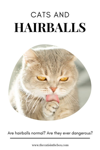 Cats and Hairballs: Pinterest-friendly pin