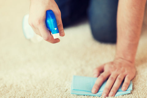 cleaning carpet with cloth and spray bottle