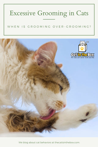 Excessive grooming in cats - Pinterest friendly pin