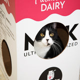 Mega Milk Carton with Minnie, a Neady Cats shelter resident