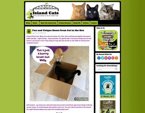 Review of Cat in the Box Mega Milk Carton by Island-Cats.com
