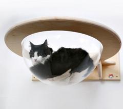 Wall-Mounted Transparent Chaise Lounge for Cats
