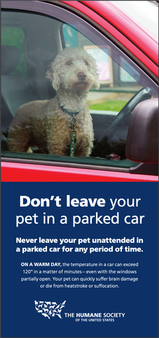 Humane Society flyer about leaving pets in a hot car