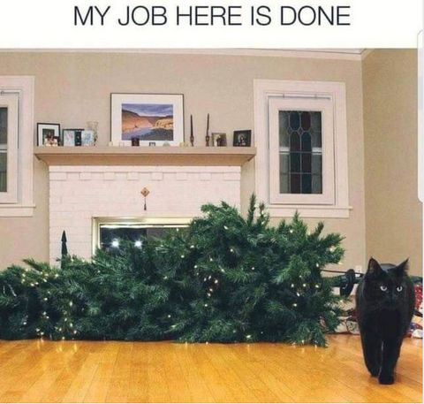 """cat walking away from the Christmas tree lying on its side: """"My job here is done."""""""