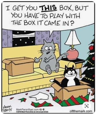 cat giving another cat a plain cardboard box: I get you this box, but you have to play with the box it came in?